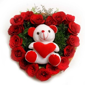 FNP_Roses_N_Soft_toy_Valentine's Day