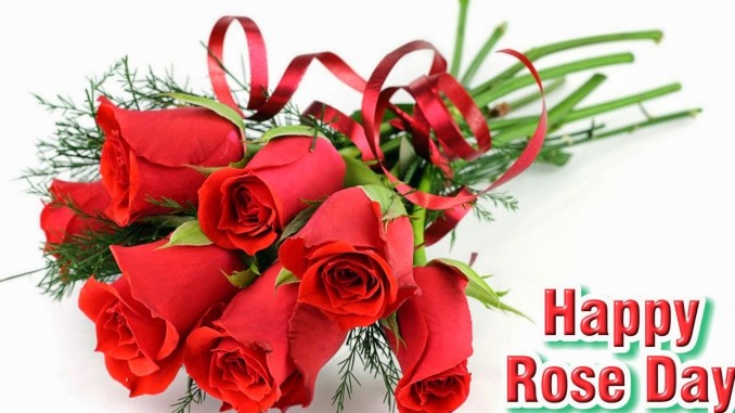Happy Valentines Day - Rose Day Images Wallpapers