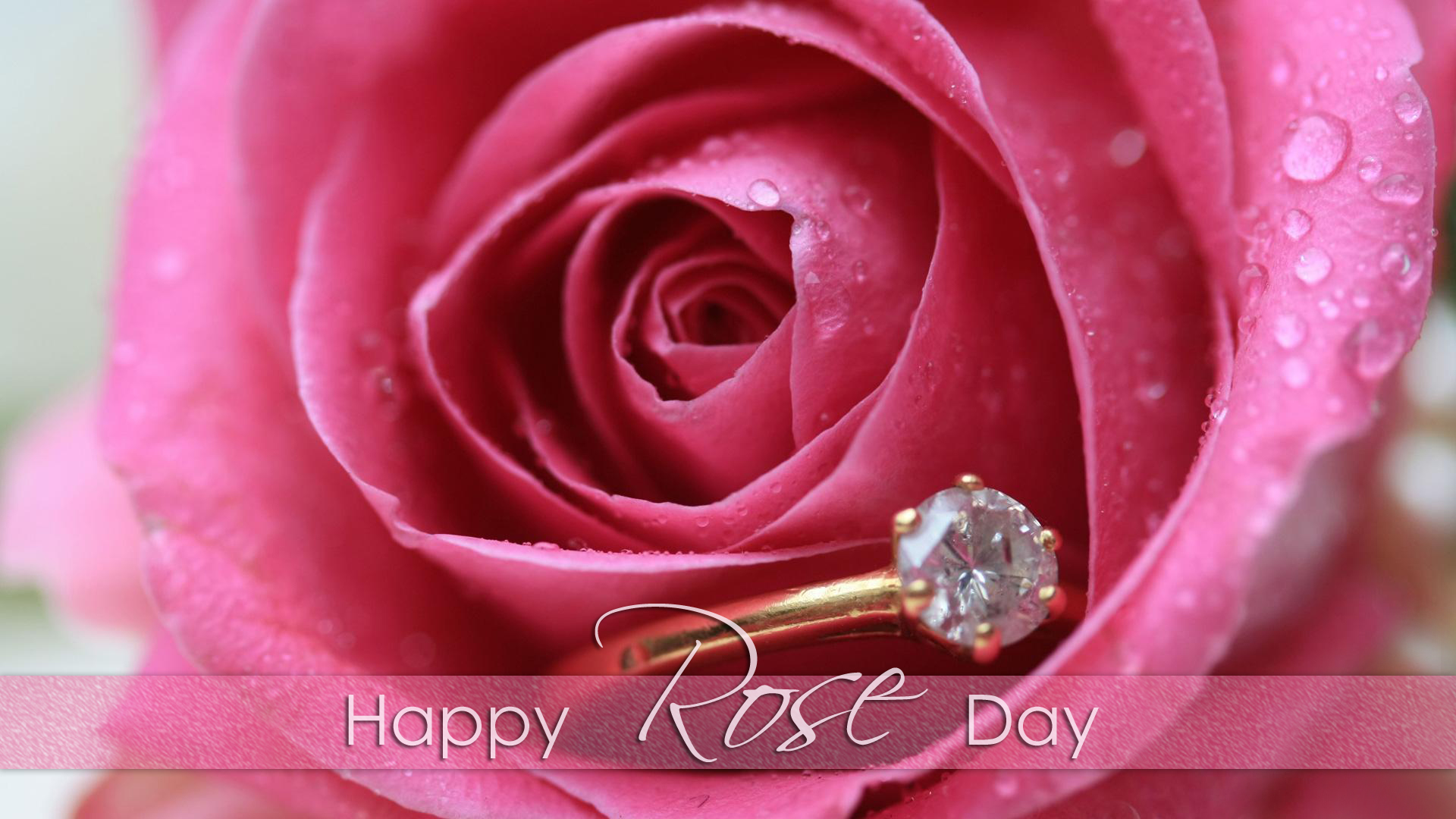 pink-rose-with-happy-rose-day-hd-wallpapers
